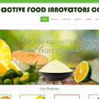 web-design-philippines_active-foods-innovators-philippines